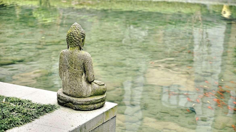 Les bienfaits de la méditation et de la sophrologie